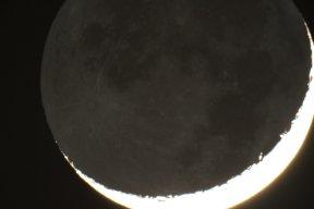 Old Moon in New Moon's Cradle